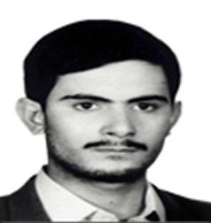 شهید حسین نیکی ملکی، کادر امنیت پرواز 655 ایران ایر